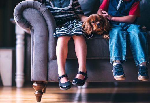 小学校等の臨時休業等に伴い子どもの世話が必要なとき アイキャッチ 横幅960ピクセル縦幅624ピクセル